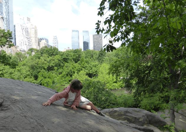Central Park Rock Climbing