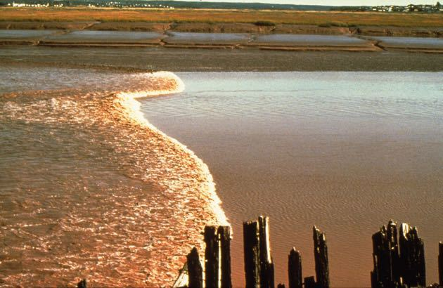 Watch Tidal Bore Moncton