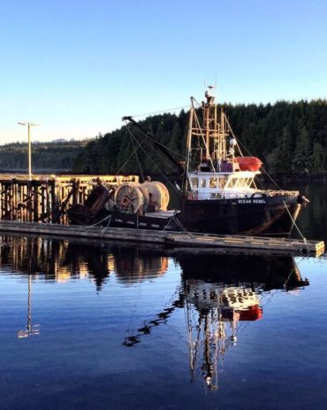 a guide to ucluelet, british columbia – with kids