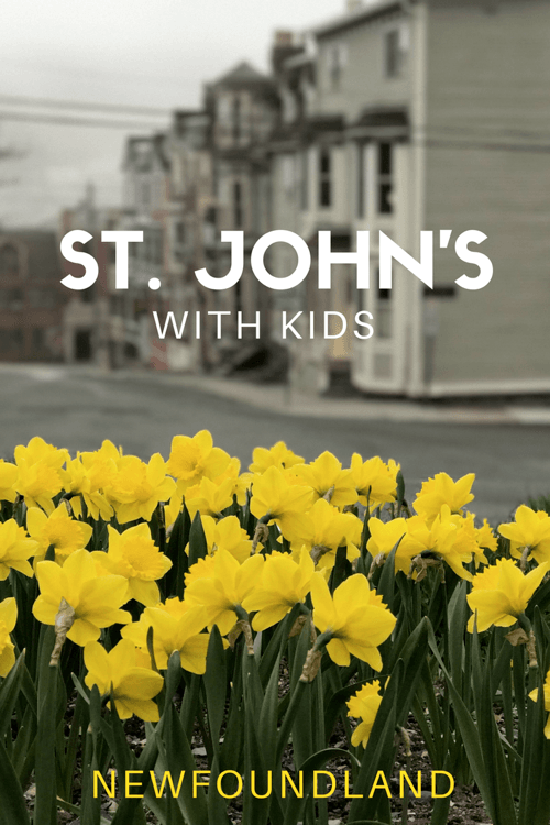 Things to do in St. John's NL with Kids